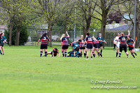 Tani's Rugby-0330